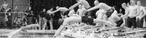 Black and white photo of swimmers diving
