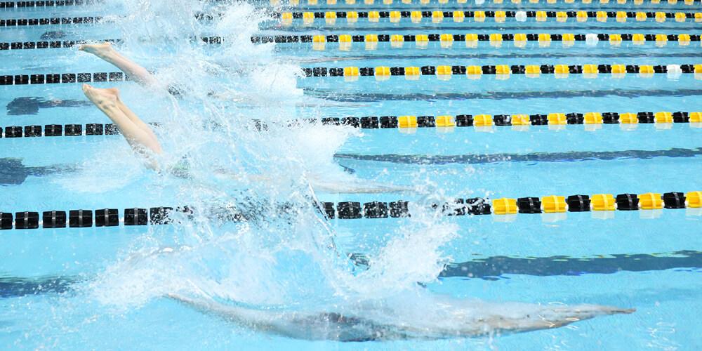 Swimming Slider Image 69