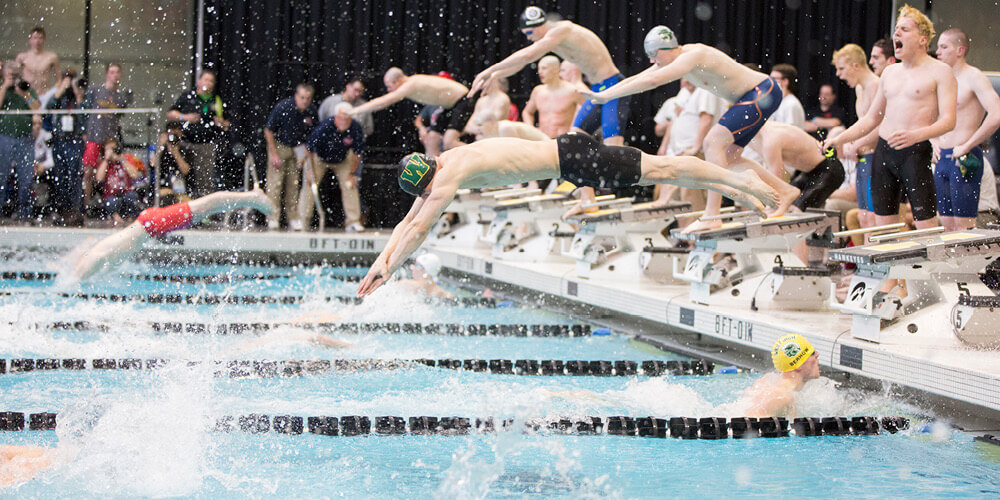 Swimmers diving into the water at a meet