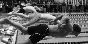 Picture of swimmers diving into the water