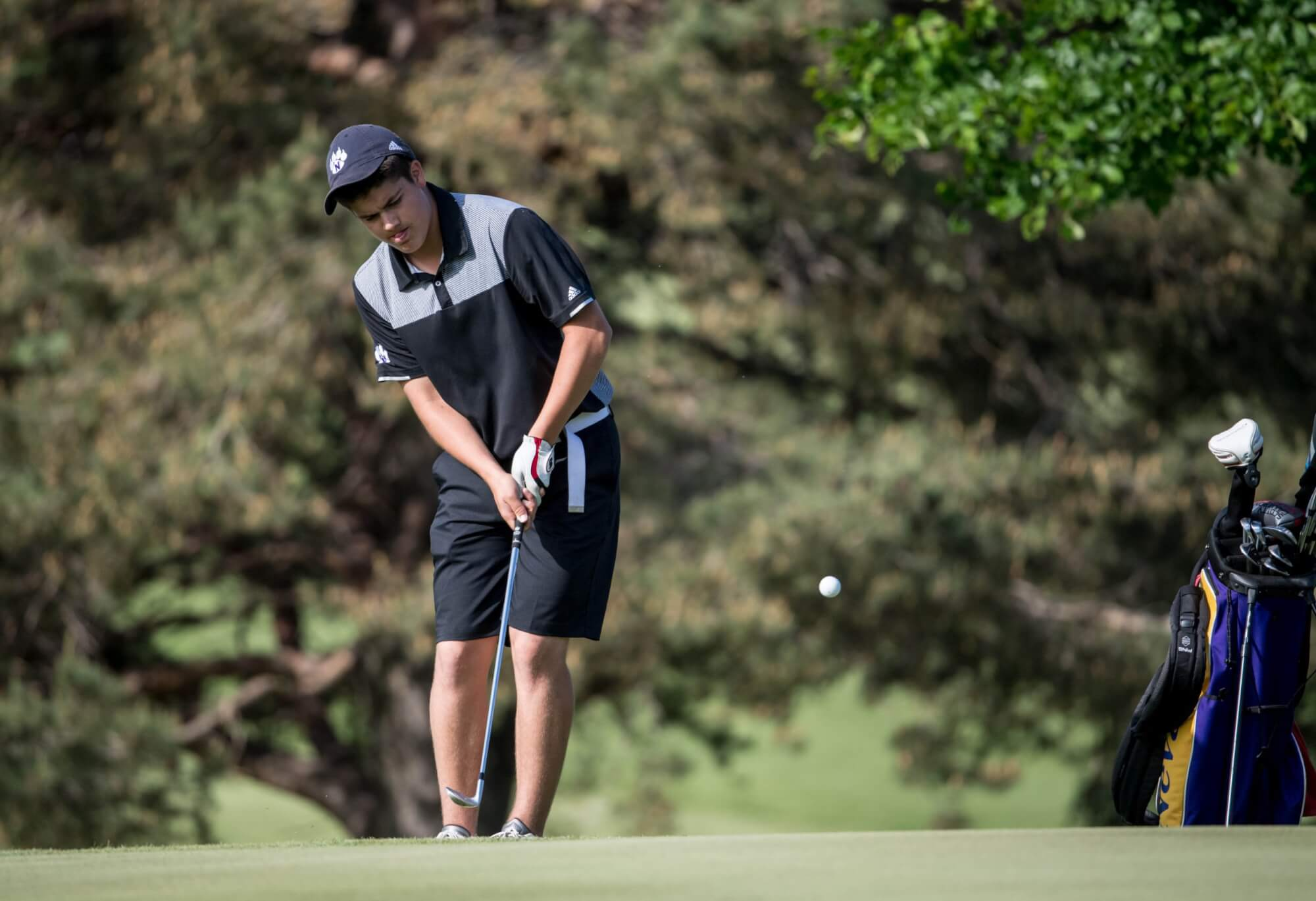 Golf: 2020 State Meet Sites, Spring Classifications