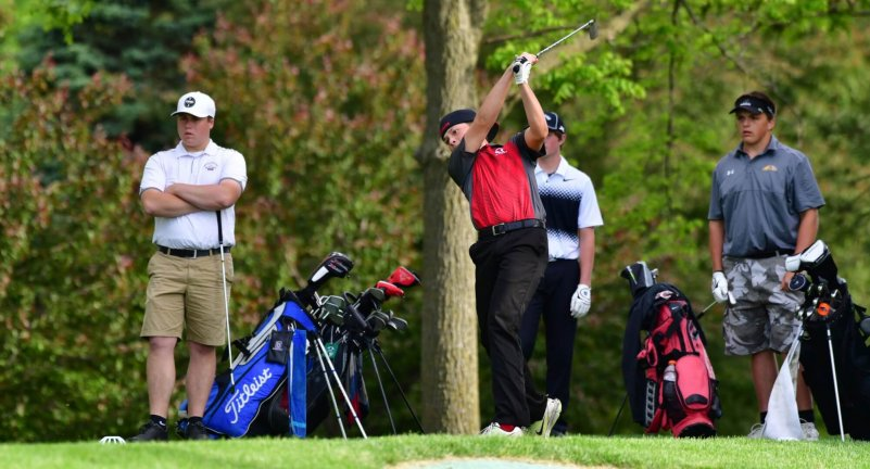 Golf: Sectional & District Assignments